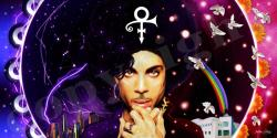 PRINCE: THE LOVE EXPERIENCE