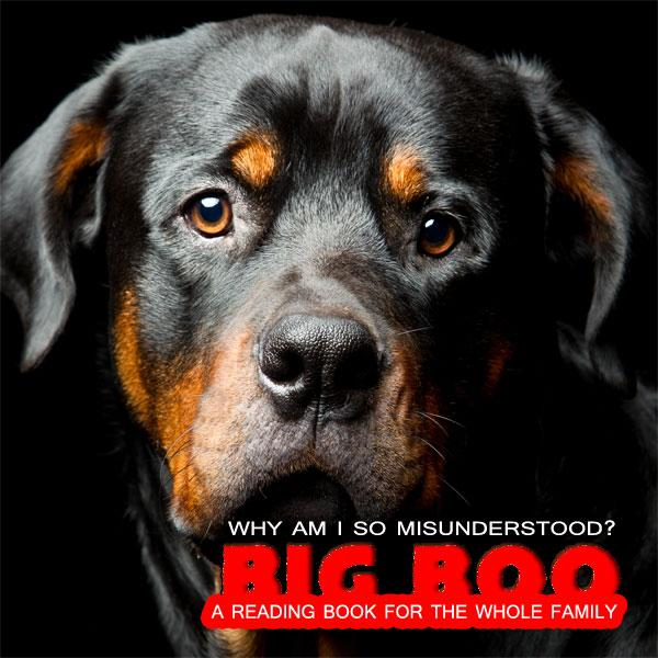 Big Boo The Rottweiler Why Am I So Misunderstood Printcuda